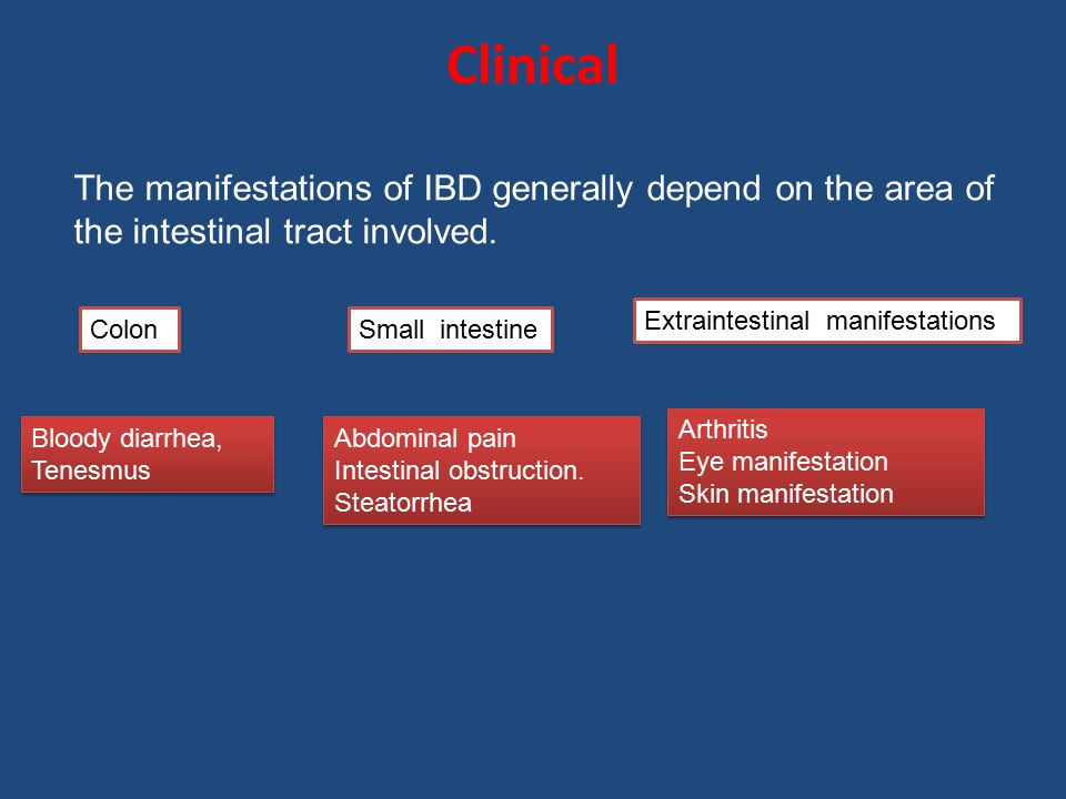Clinical The manifestations of IBD generally depend on the area of the intestinal tract involved. Bloody diarrhea, Tenesmus Bloody diarrhea, Tenesmus