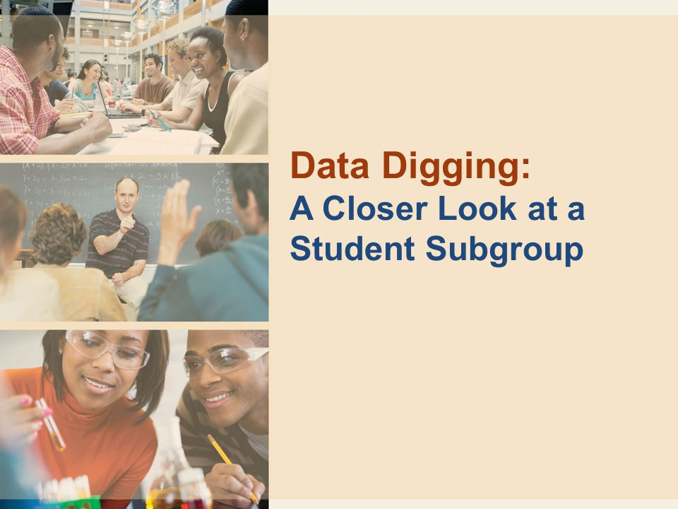 Data Digging: A Closer Look at a Student Subgroup