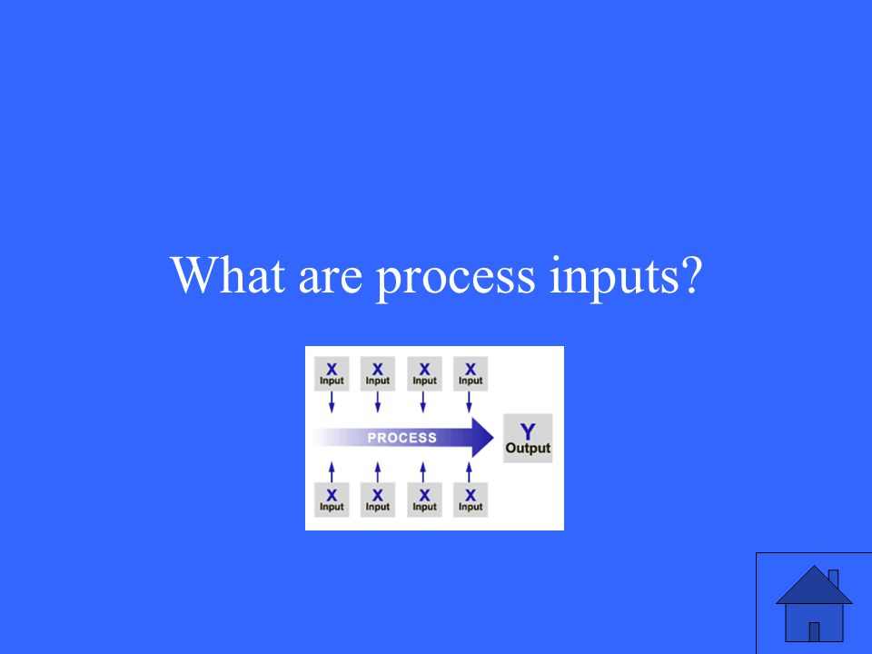 What are process inputs?