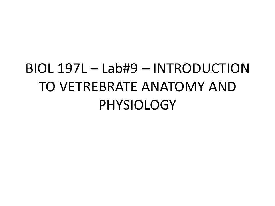 Identify: 12 -Ovary 13 - 14 - 15 - 16 - 17 -