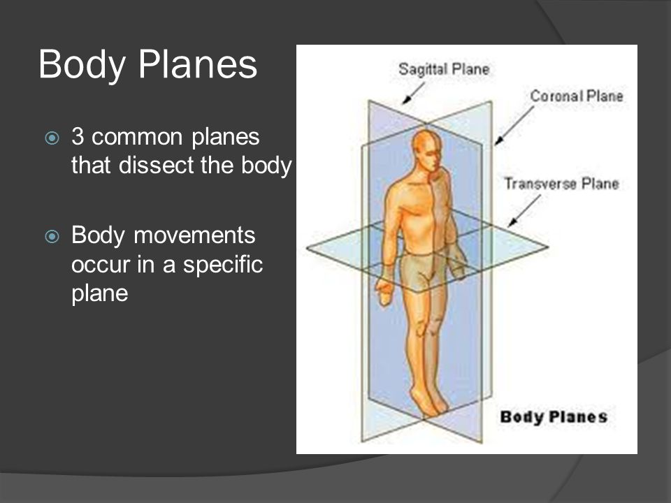 Body Planes  3 common planes that dissect the body  Body movements occur in a specific plane