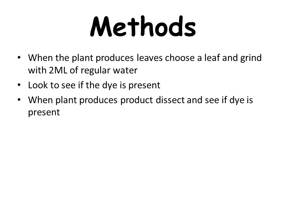 Methods When the plant produces leaves choose a leaf and grind with 2ML of regular water Look to see if the dye is present When plant produces product dissect and see if dye is present