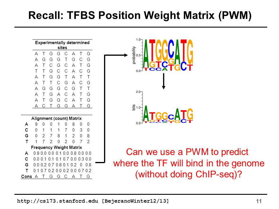 http://cs173.stanford.edu [BejeranoWinter12/13] 11 Recall: TFBS Position Weight Matrix (PWM) Alignment (count) Matrix A90010800 C01117030 G02781208 T17202072 Frequency Weight Matrix A0.90.0 0.10.00.80.0 C 0.1 0.70.00.30.0 G 0.20.70.80.10.200.8 T0.10.70.20.00.20.00.70.2 ConsATGGCATG Experimentally determined sites ATGGCATG AGGGTGCG ATCGCATG TTGCCACG ATGGTATT ATTCGACG AGGGCGTT ATGACATG ATGGCATG ACTGGATG Can we use a PWM to predict where the TF will bind in the genome (without doing ChIP-seq)