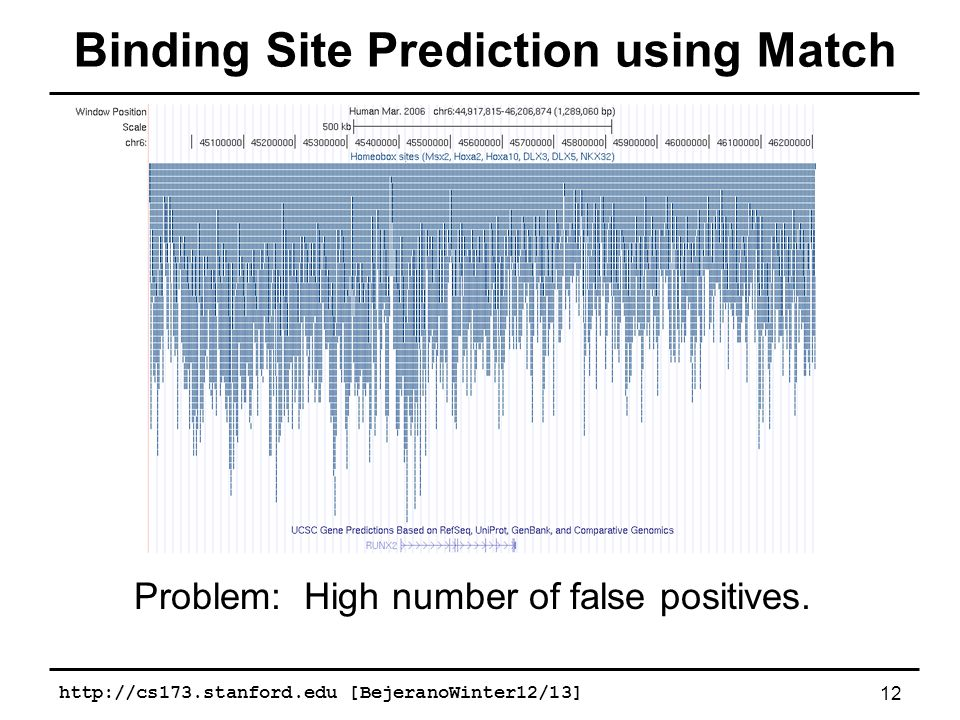 http://cs173.stanford.edu [BejeranoWinter12/13]12 Binding Site Prediction using Match Problem: High number of false positives.