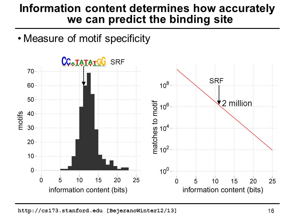 Measure of motif specificity 16 Information content determines how accurately we can predict the binding site SRF 2 million http://cs173.stanford.edu [BejeranoWinter12/13]