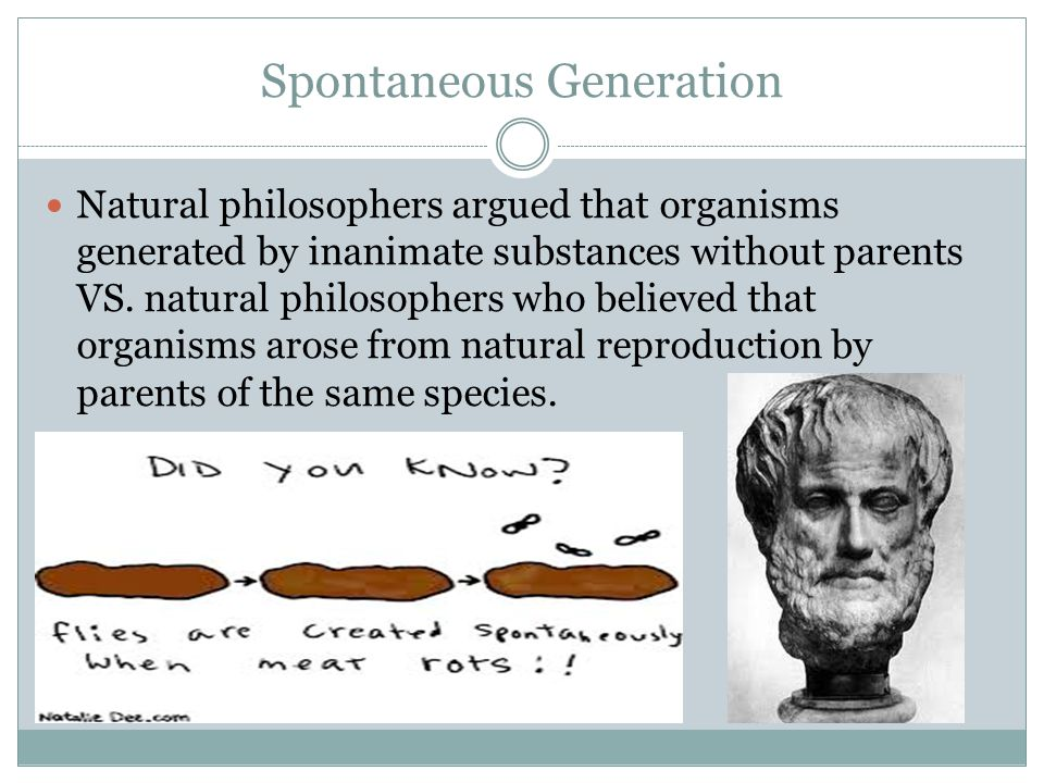 Spontaneous Generation Natural philosophers argued that organisms generated by inanimate substances without parents VS. natural philosophers who belie
