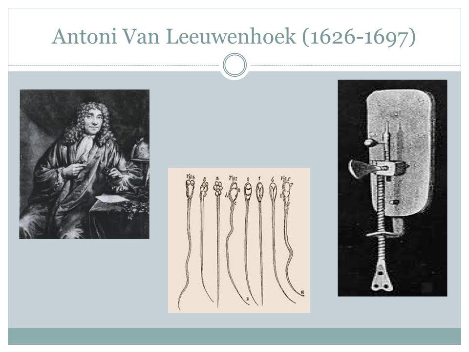 Antoni Van Leeuwenhoek (1626-1697)