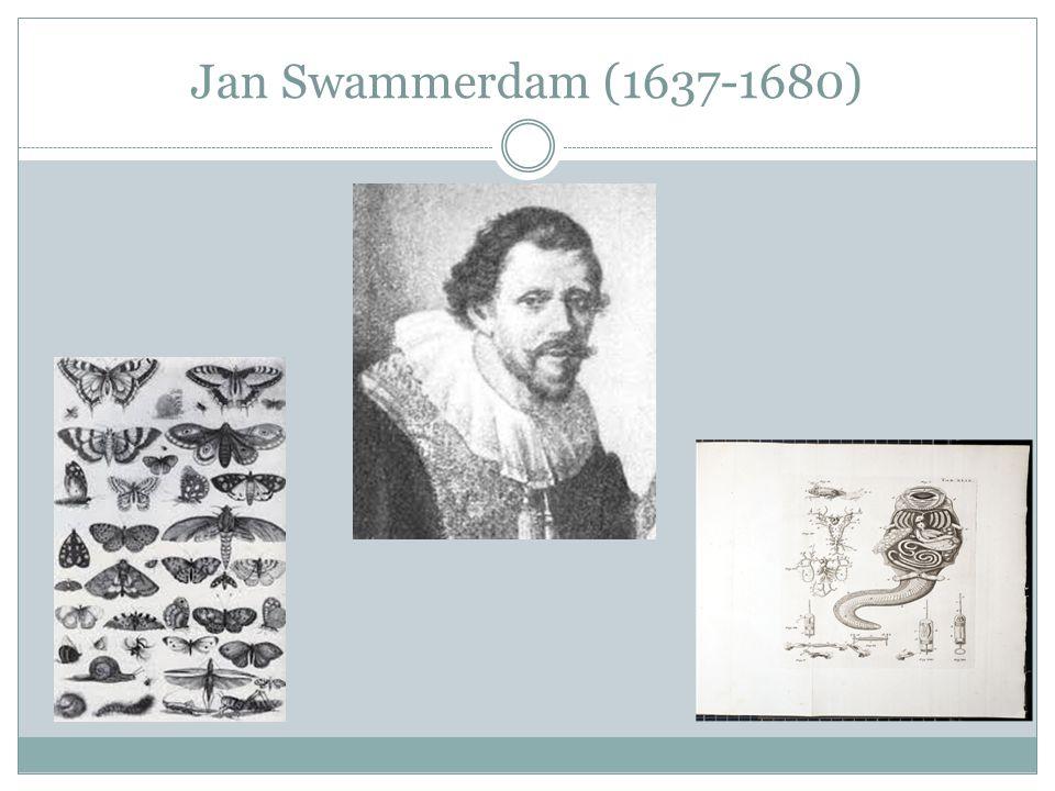 Jan Swammerdam (1637-1680)