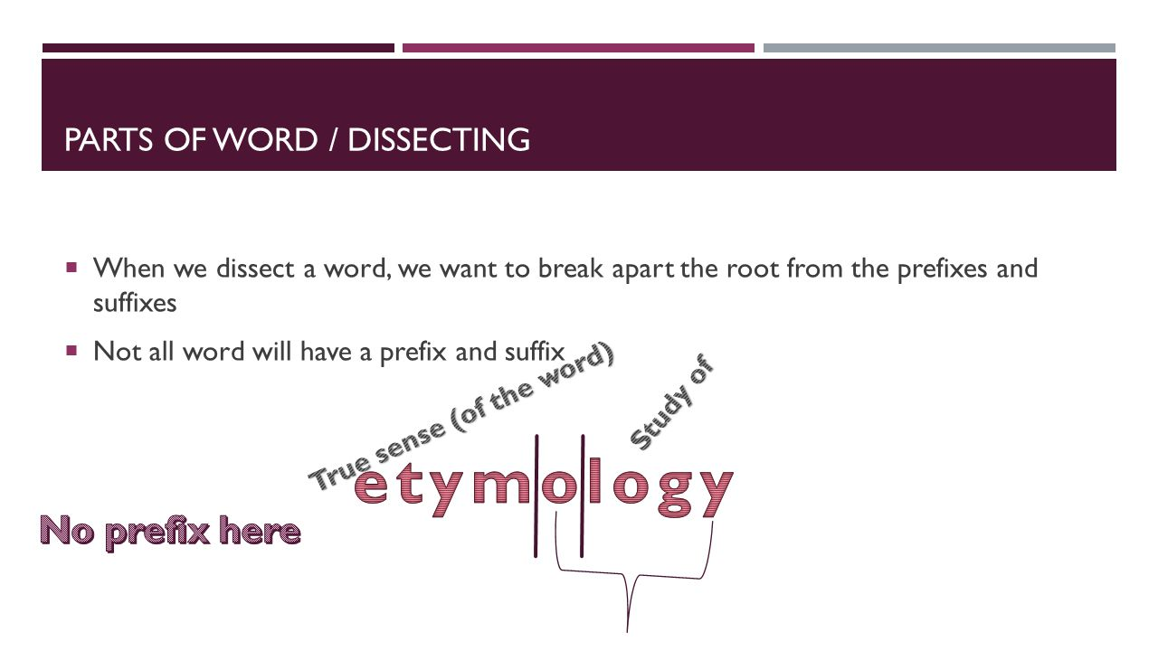 PARTS OF WORD / DISSECTING  When we dissect a word, we want to break apart the root from the prefixes and suffixes  Not all word will have a prefix and suffix