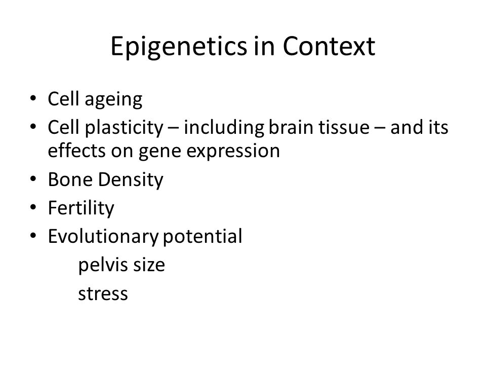 Epigenetics in Context Cell ageing Cell plasticity – including brain tissue – and its effects on gene expression Bone Density Fertility Evolutionary p