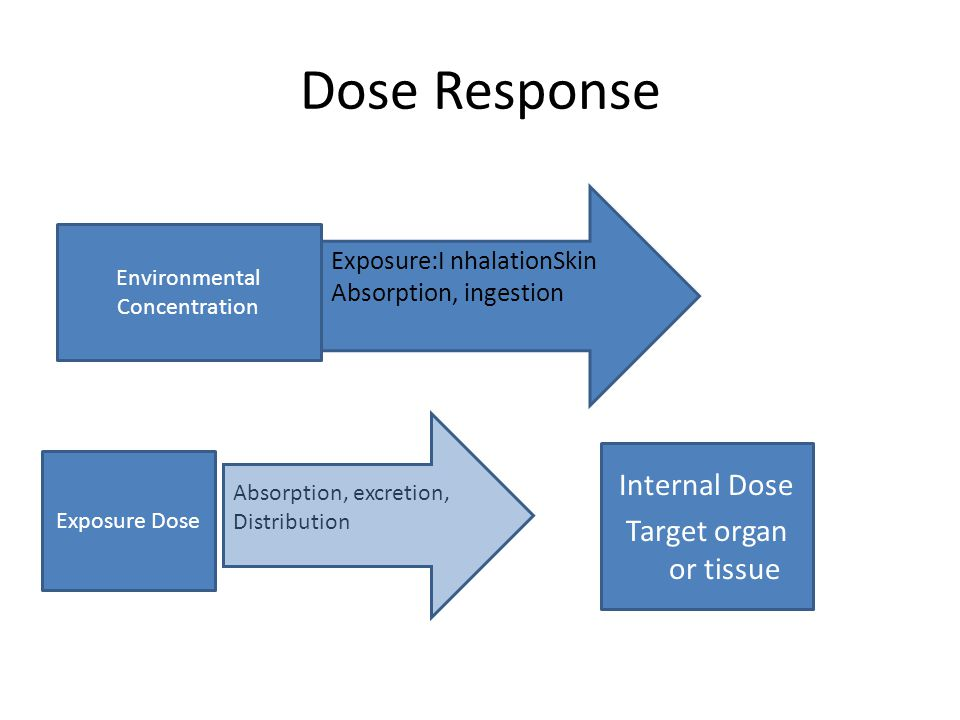 Dose Response Environmental Concentration Exposure:I nhalationSkin Absorption, ingestion Exposure Dose Absorption, excretion, Distribution Internal Do