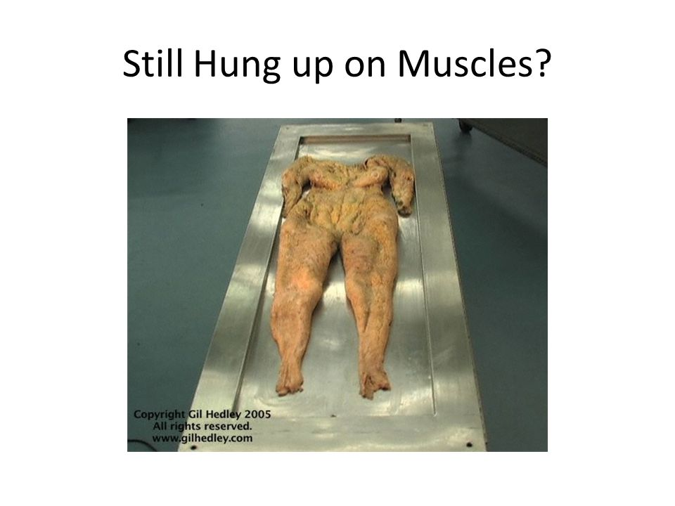 Still Hung up on Muscles?