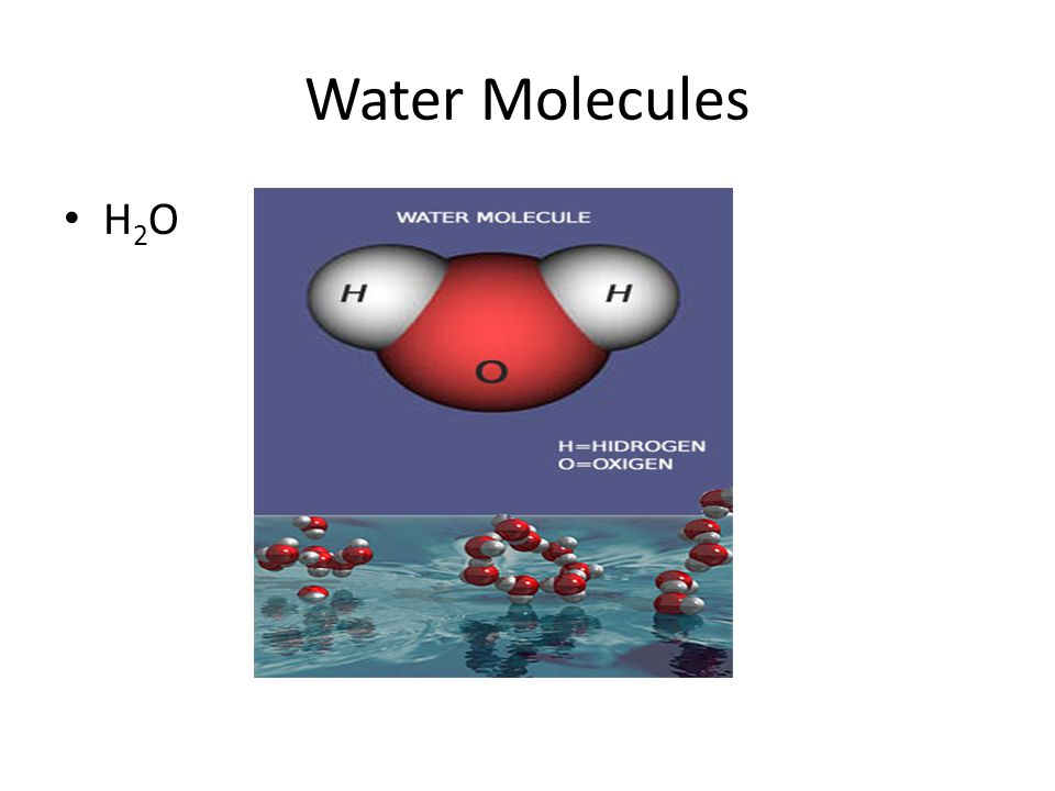 Water Molecules H 2 O