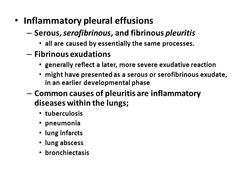 Inflammatory pleural effusions – Serous, serofibrinous, and fibrinous pleuritis all are caused by essentially the same processes. – Fibrinous exudatio