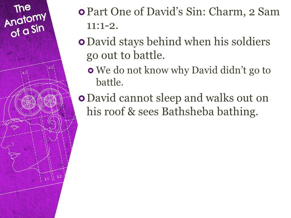  Part One of David's Sin: Charm, 2 Sam 11:1-2.