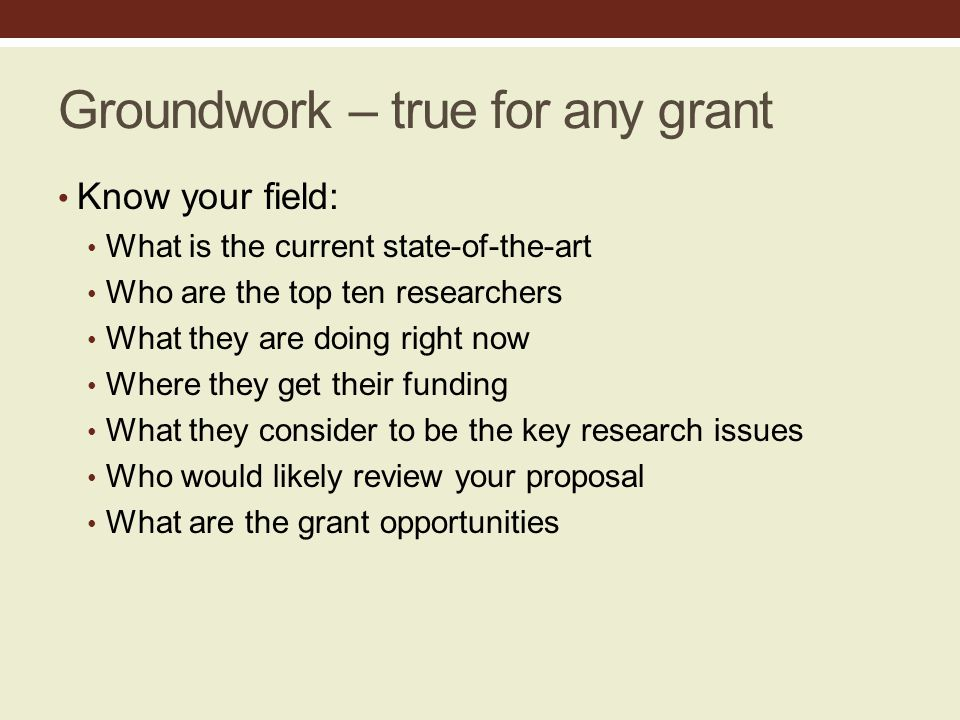 Groundwork – true for any grant Know your field: What is the current state-of-the-art Who are the top ten researchers What they are doing right now Where they get their funding What they consider to be the key research issues Who would likely review your proposal What are the grant opportunities
