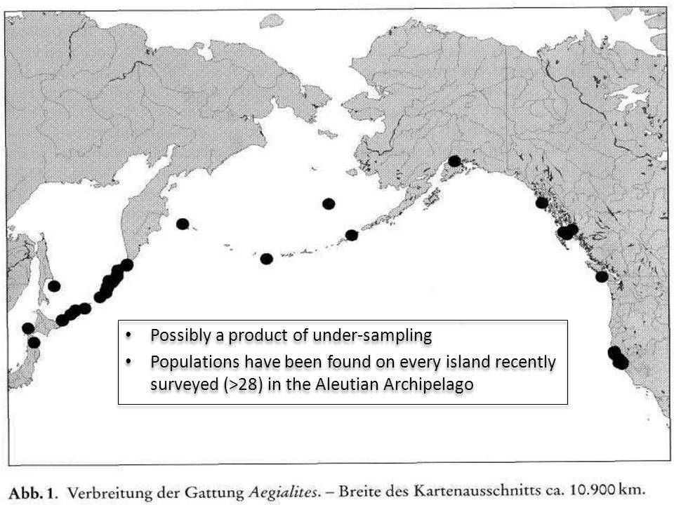 Possibly a product of under-sampling Populations have been found on every island recently surveyed (>28) in the Aleutian Archipelago Possibly a product of under-sampling Populations have been found on every island recently surveyed (>28) in the Aleutian Archipelago