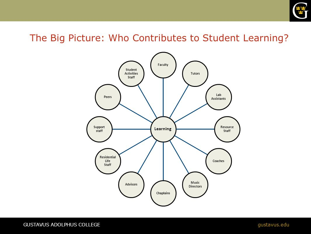GUSTAVUS ADOLPHUS COLLEGEgustavus.edu The Big Picture: Who Contributes to Student Learning? Learning FacultyTutors Lab Assistants Resourc e Staff Coac