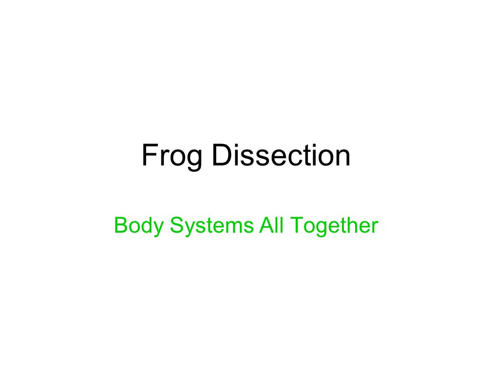 Frog Dissection Body Systems All Together
