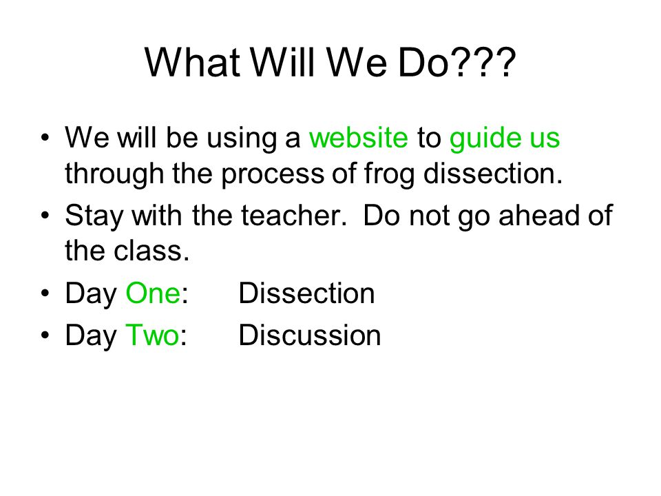 What Will We Do??? We will be using a website to guide us through the process of frog dissection. Stay with the teacher. Do not go ahead of the class.