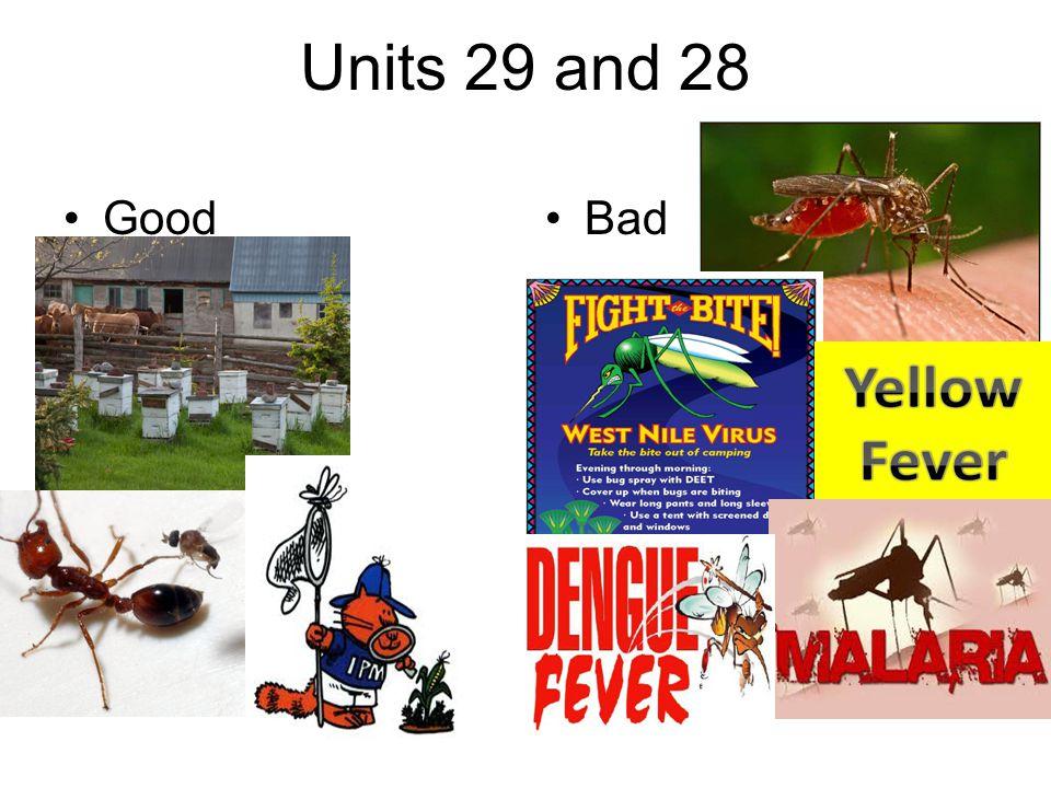 Units 29 and 28 GoodBad