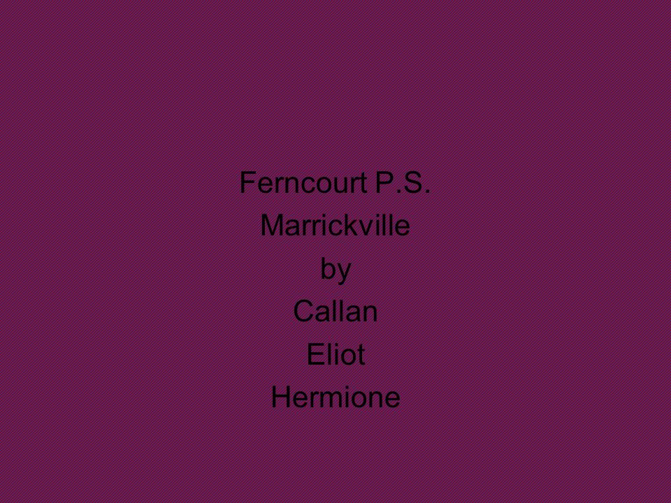 Ferncourt P.S. Marrickville by Callan Eliot Hermione