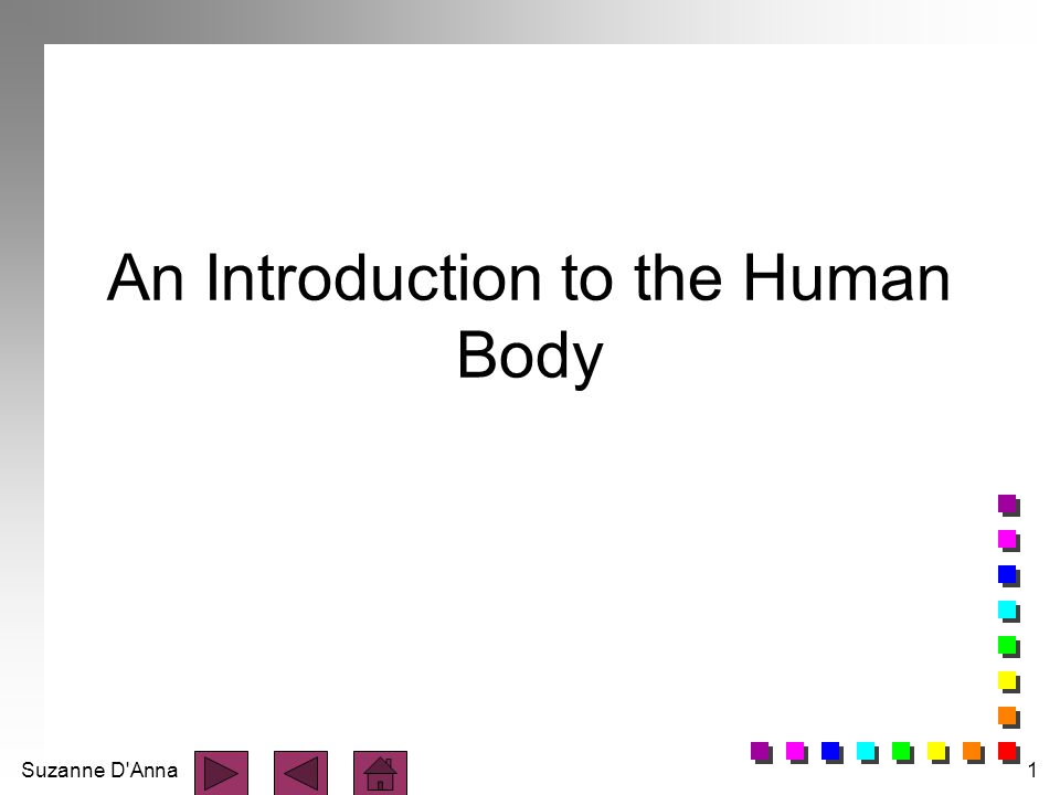 Suzanne D'Anna1 An Introduction to the Human Body