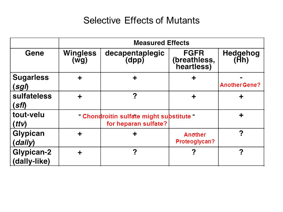 Selective Effects of Mutants Another Gene.