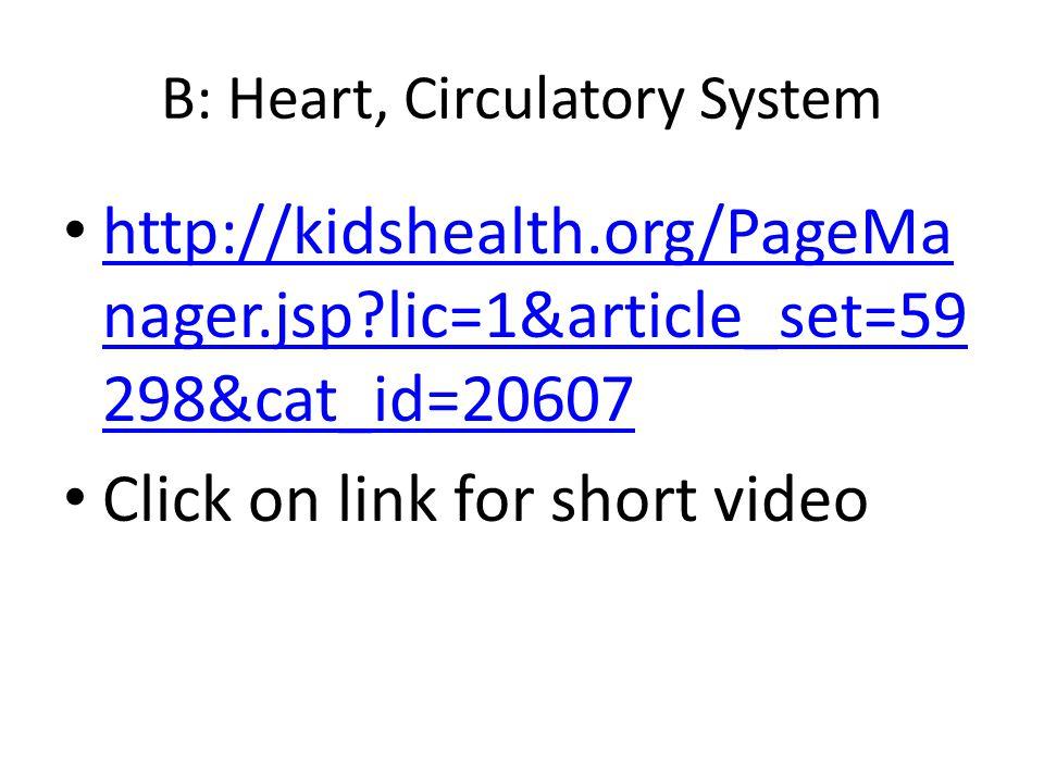 B: Heart, Circulatory System http://kidshealth.org/PageMa nager.jsp?lic=1&article_set=59 298&cat_id=20607 http://kidshealth.org/PageMa nager.jsp?lic=1
