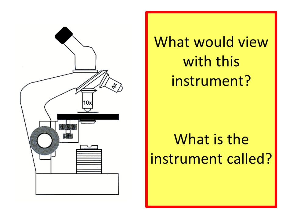 What would view with this instrument? What is the instrument called?