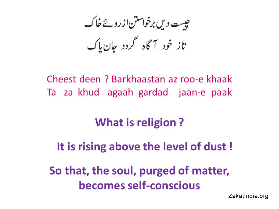 In Islam there is direct relationship between God and human beings ZakatIndia.org