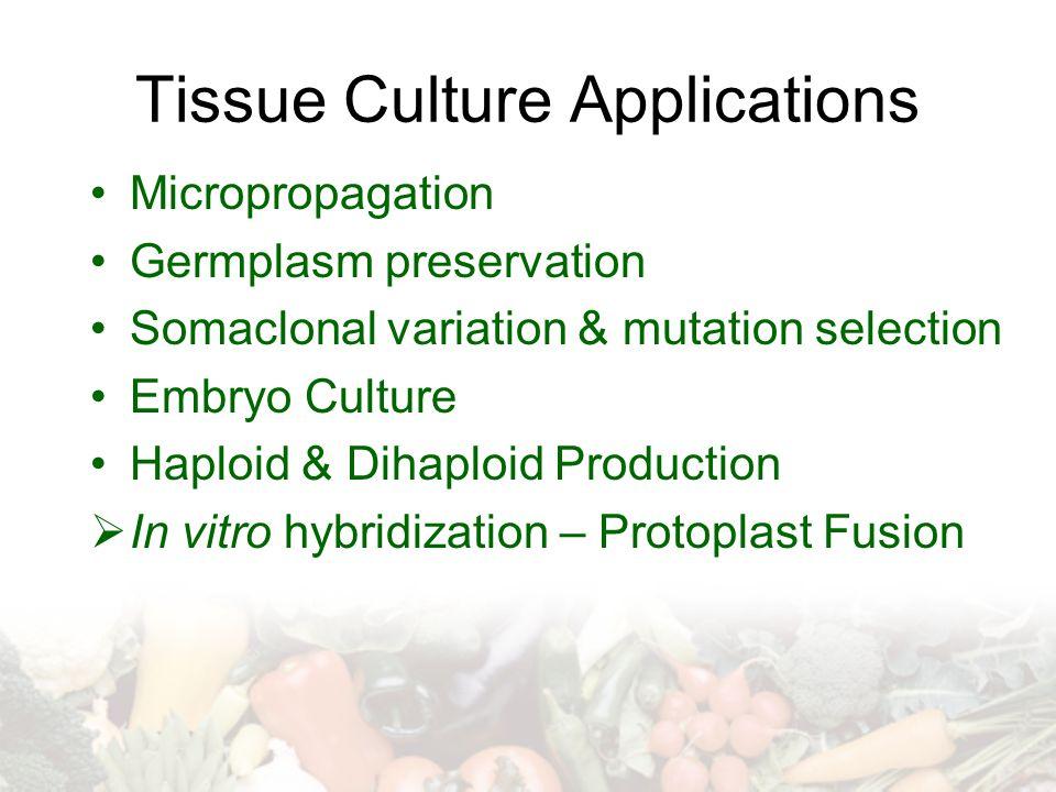 Tissue Culture Applications Micropropagation Germplasm preservation Somaclonal variation & mutation selection Embryo Culture Haploid & Dihaploid Produ