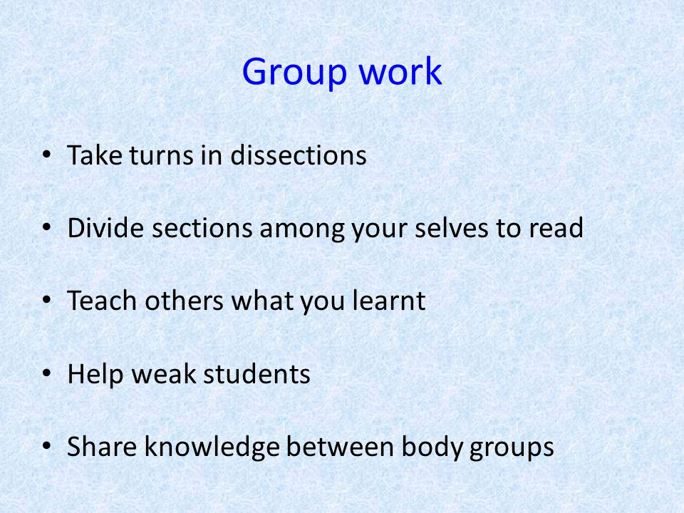 Group work Take turns in dissections Divide sections among your selves to read Teach others what you learnt Help weak students Share knowledge between body groups