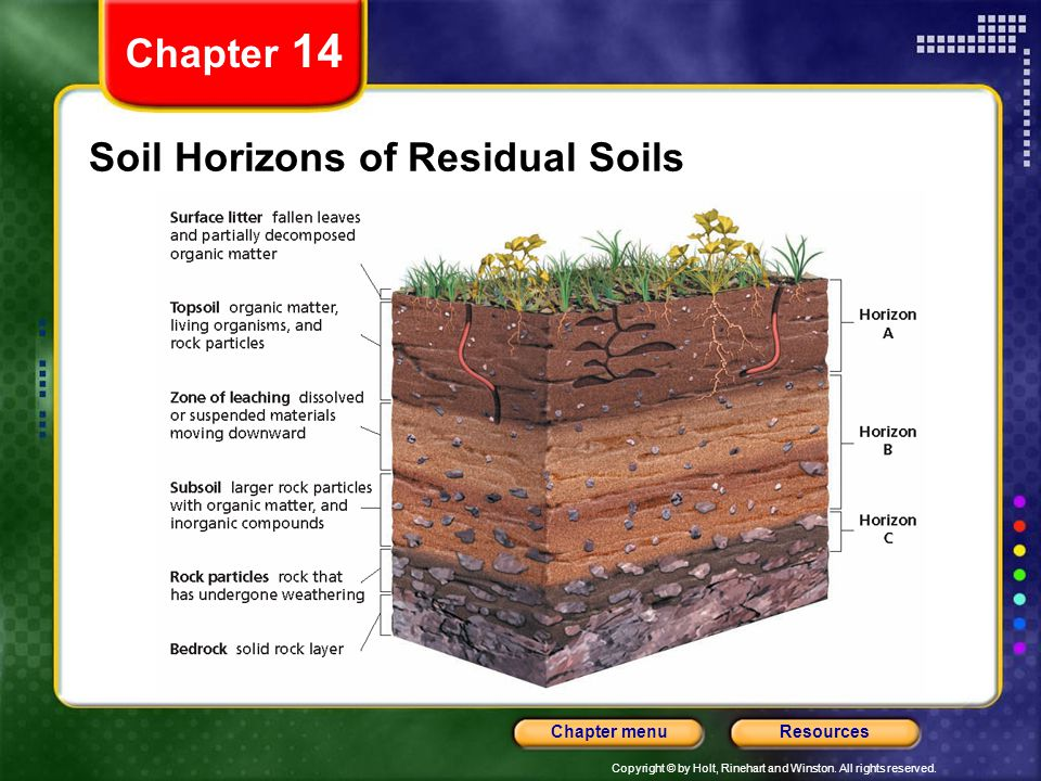 Copyright © by Holt, Rinehart and Winston. All rights reserved. ResourcesChapter menu Soil Horizons of Residual Soils Chapter 14