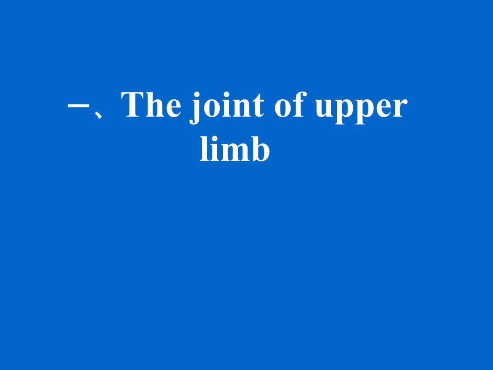 一、 The joint of upper limb