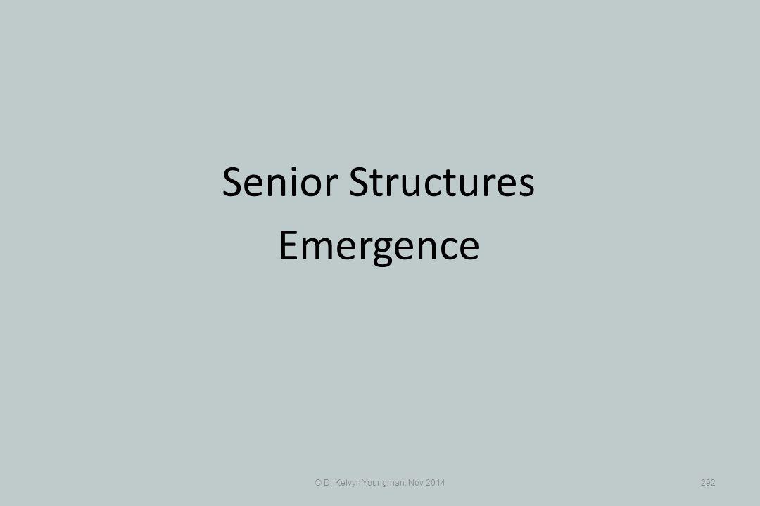 © Dr Kelvyn Youngman, Nov 2014292 Senior Structures Emergence