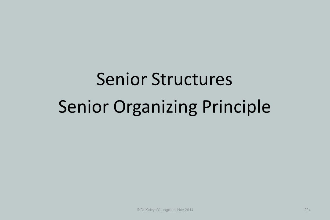 © Dr Kelvyn Youngman, Nov 2014304 Senior Structures Senior Organizing Principle