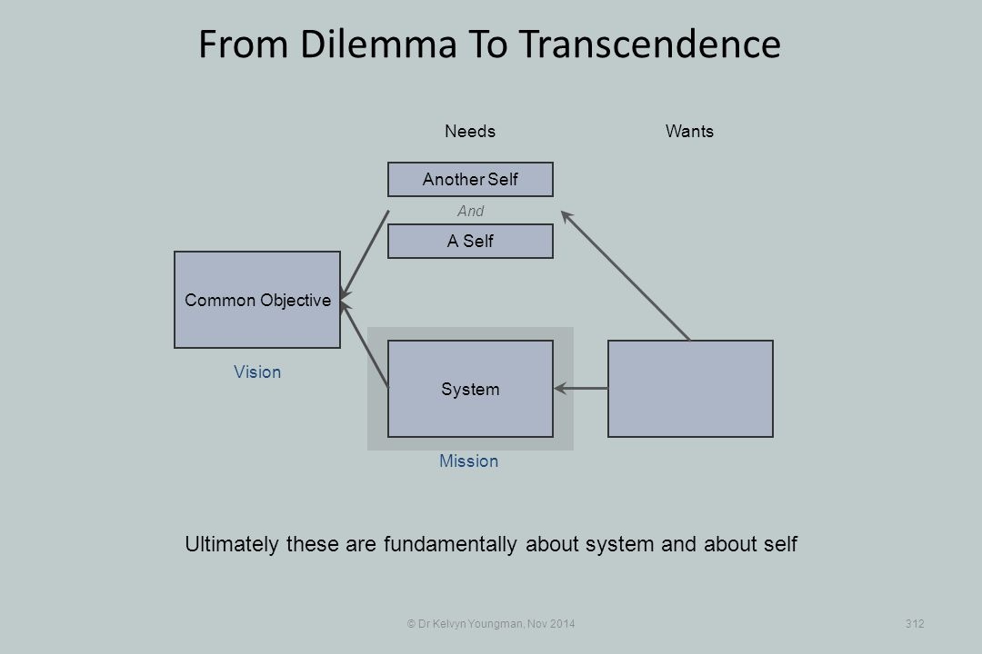 System © Dr Kelvyn Youngman, Nov 2014312 From Dilemma To Transcendence Ultimately these are fundamentally about system and about self NeedsWants Common Objective And A Self Another Self Mission Vision