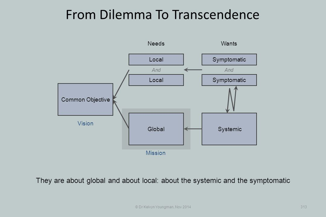 SystemicGlobal © Dr Kelvyn Youngman, Nov 2014313 From Dilemma To Transcendence They are about global and about local: about the systemic and the sympt