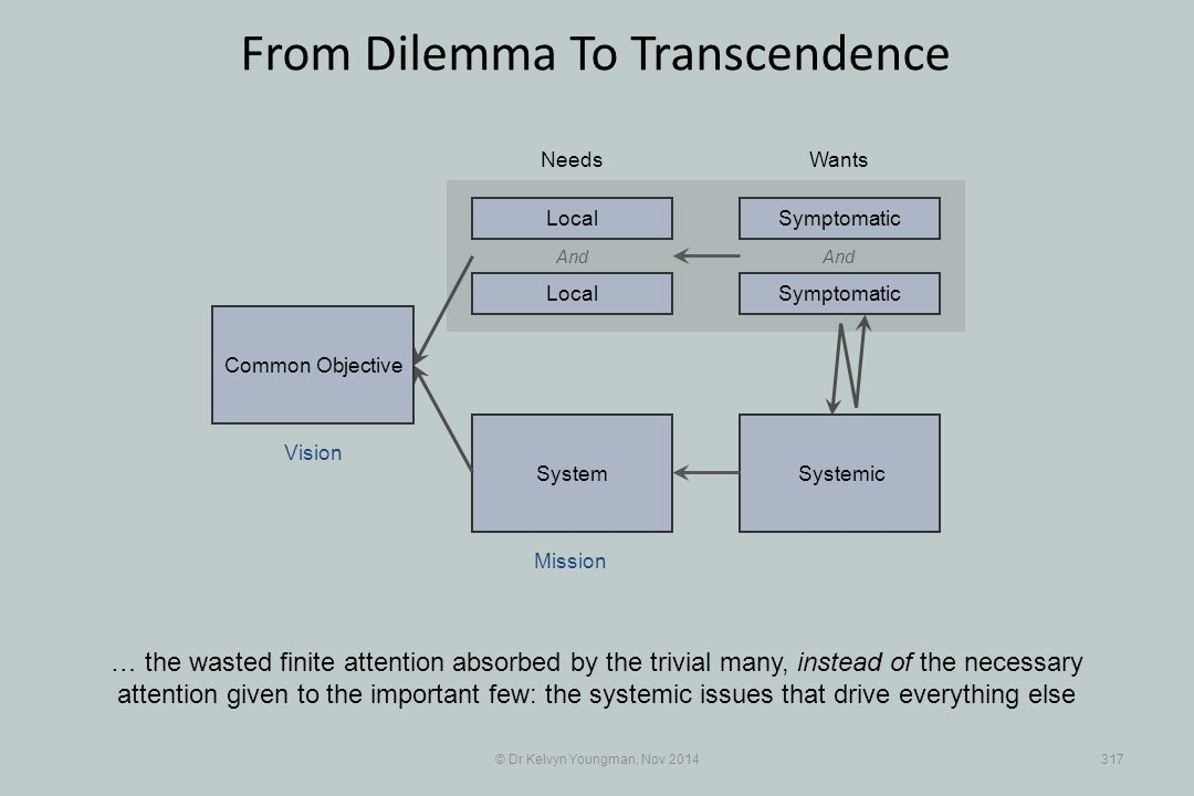 SystemicSystem © Dr Kelvyn Youngman, Nov 2014317 From Dilemma To Transcendence … the wasted finite attention absorbed by the trivial many, instead of
