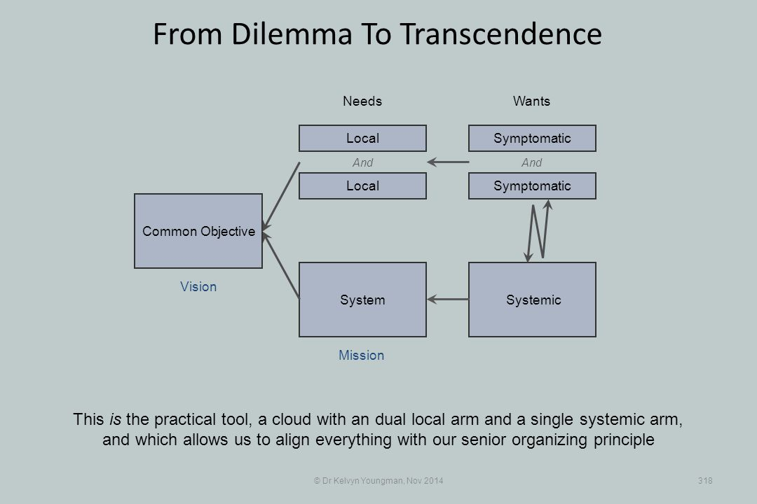 SystemicSystem © Dr Kelvyn Youngman, Nov 2014318 From Dilemma To Transcendence This is the practical tool, a cloud with an dual local arm and a single systemic arm, and which allows us to align everything with our senior organizing principle Needs Common Objective Mission Vision Wants And Local Symptomatic And Symptomatic