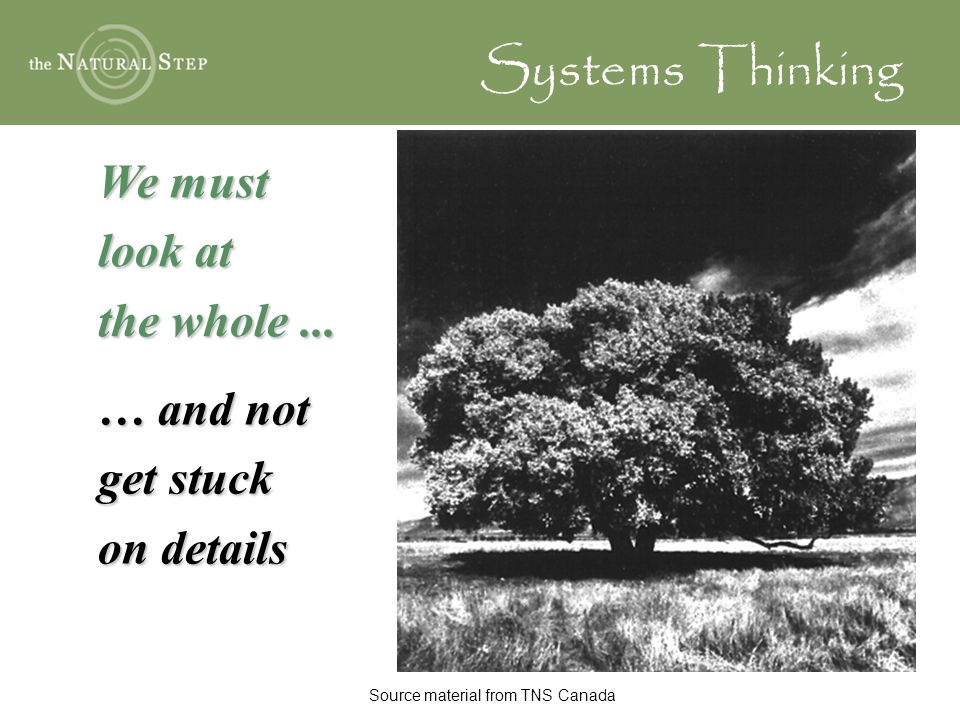 We must look at the whole... … and not get stuck on details Systems Thinking Source material from TNS Canada