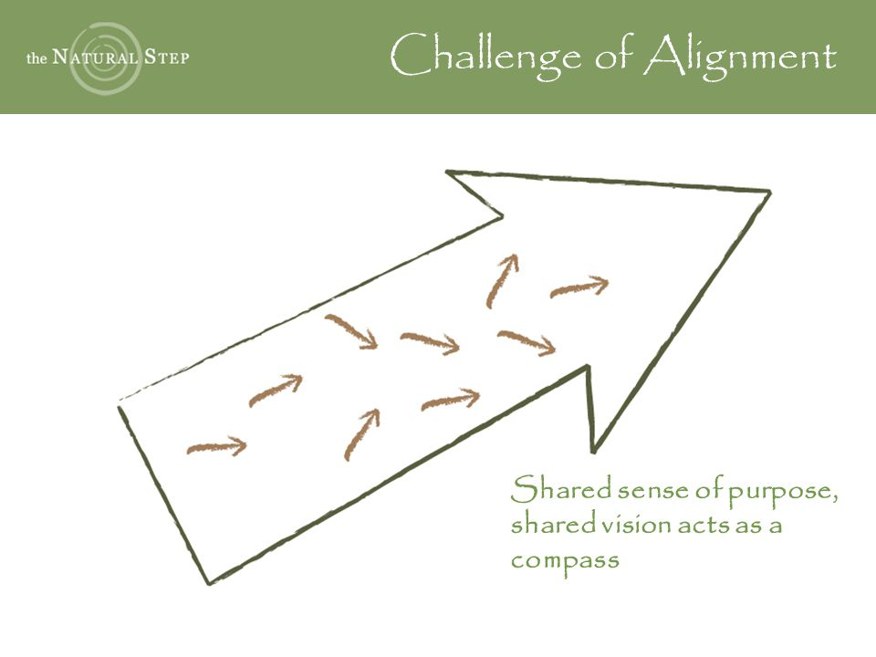 Challenge of Alignment Shared sense of purpose, shared vision acts as a compass