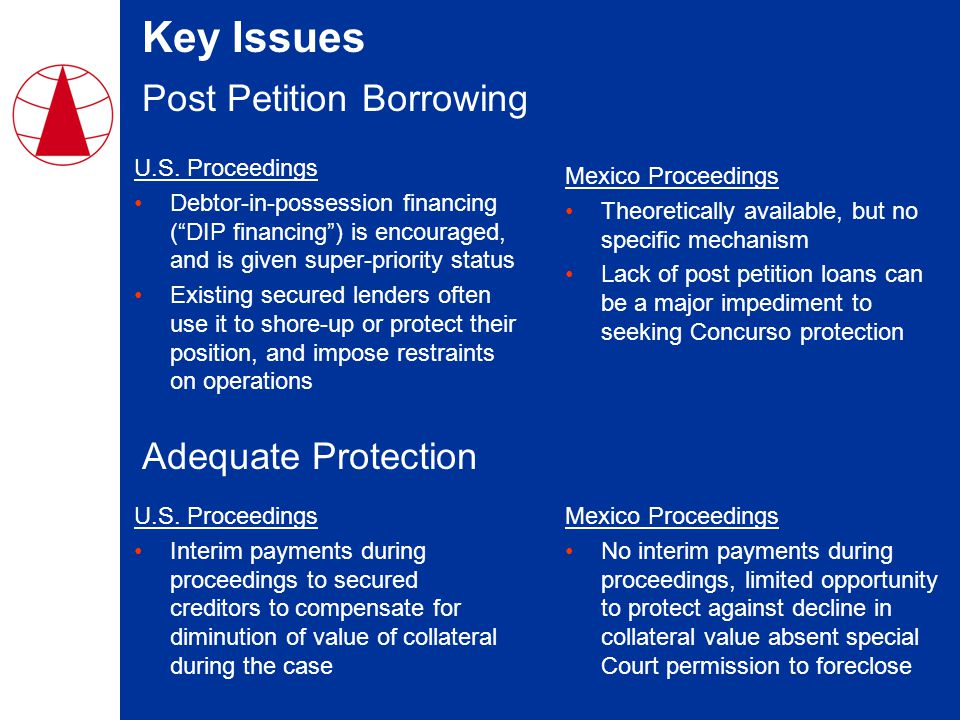 Key Issues Post Petition Borrowing U.S.