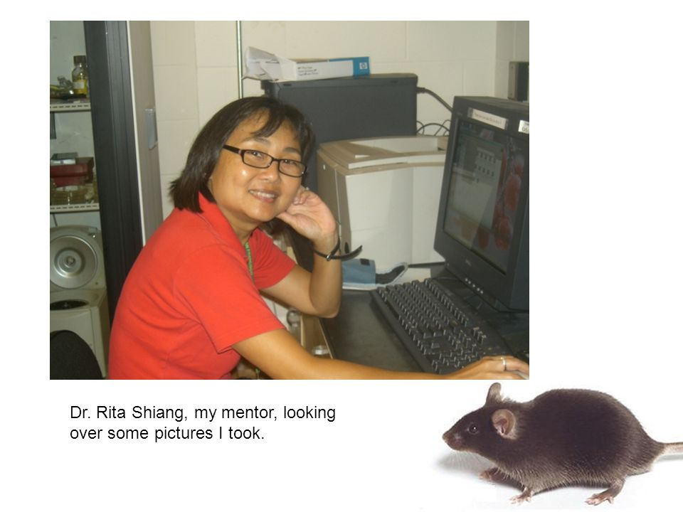 Dr. Rita Shiang, my mentor, looking over some pictures I took.