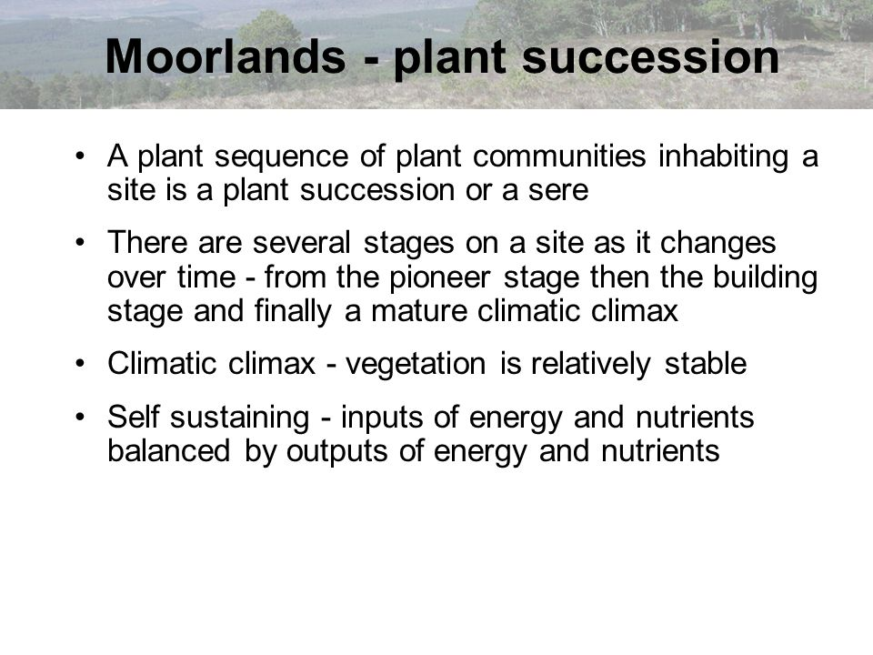 A plant sequence of plant communities inhabiting a site is a plant succession or a sere There are several stages on a site as it changes over time - f
