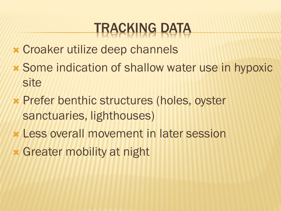  Croaker utilize deep channels  Some indication of shallow water use in hypoxic site  Prefer benthic structures (holes, oyster sanctuaries, lighthouses)  Less overall movement in later session  Greater mobility at night