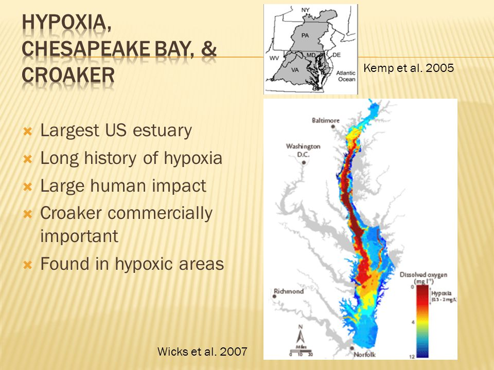  Largest US estuary  Long history of hypoxia  Large human impact  Croaker commercially important  Found in hypoxic areas Kemp et al.
