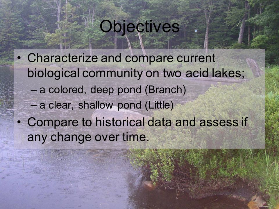 Objectives Characterize and compare current biological community on two acid lakes; –a colored, deep pond (Branch) –a clear, shallow pond (Little) Compare to historical data and assess if any change over time.