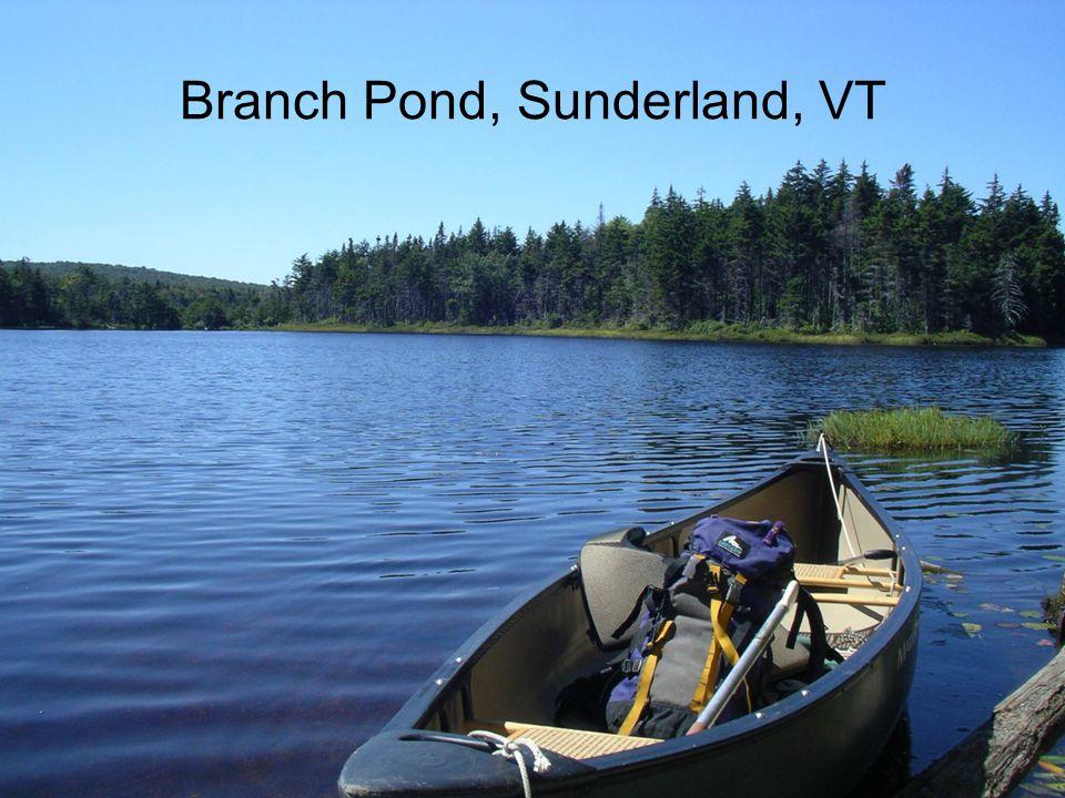 Branch Pond, Sunderland, VT